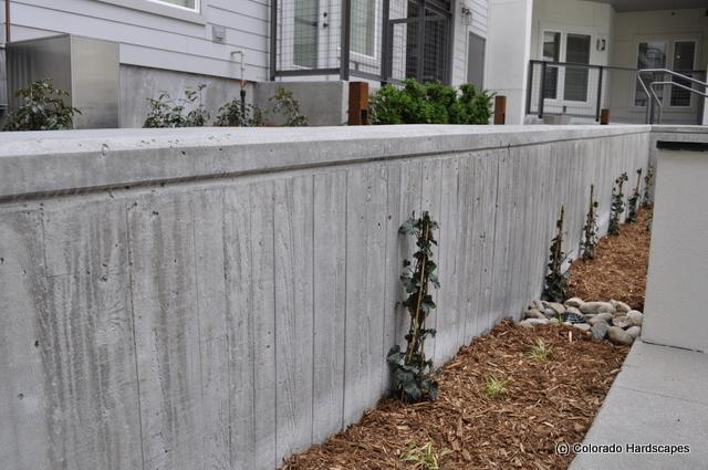 Architectual concrete walls the hardscaper - Decorative concrete wall forms ...