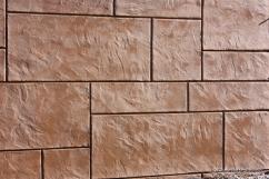 Custom shotcrete finished wall