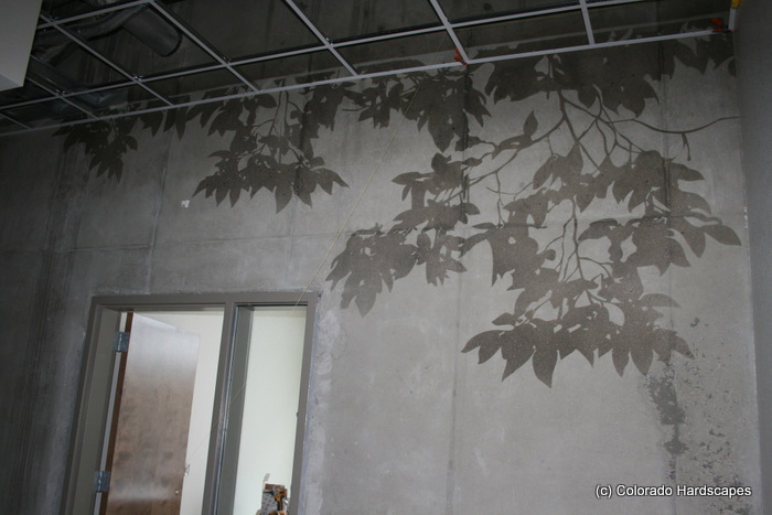 Sandblasted and tinted concrete tree shadows