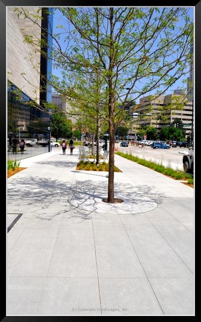 Custom concrete tree grate