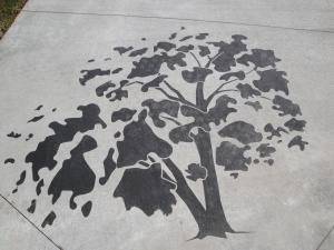 Sandblasted and stained tree in a park in Erie, CO. Sandblasting and staining by Colorado Hardscapes