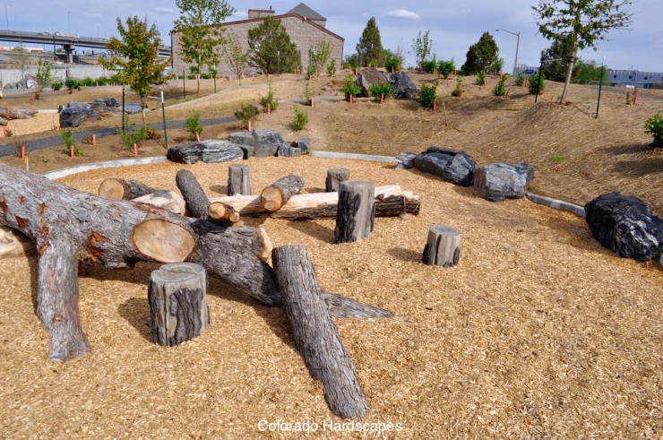 Amidst the fallen trees, Colorado Hardscapes installed custom concrete tree stump steppers